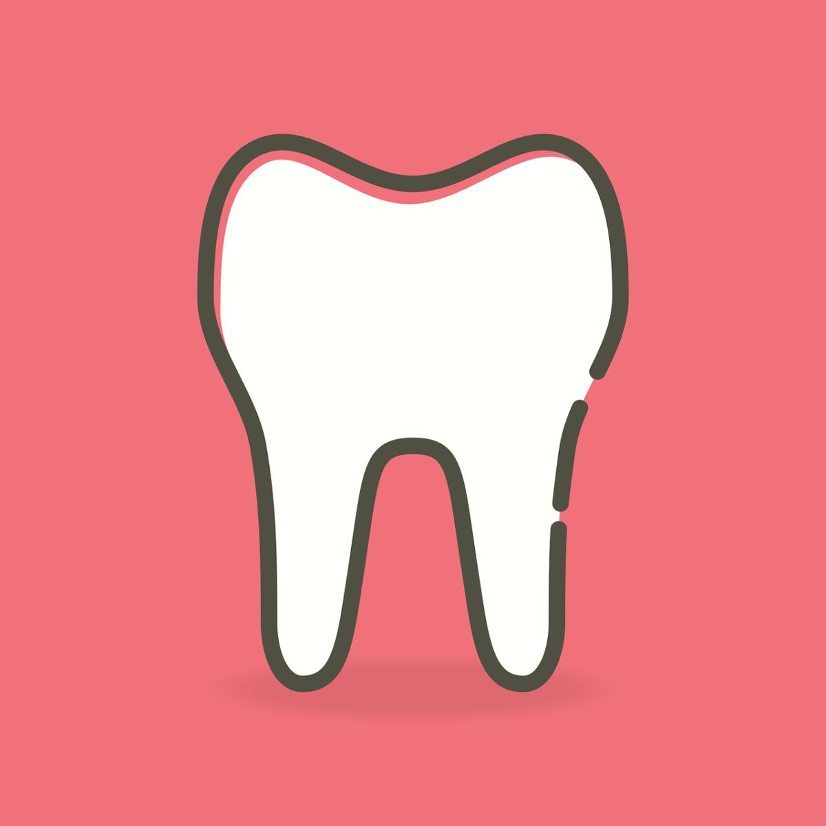 Śliczne nienaganne zęby również efektowny cudny uśmiech to powód do dumy.